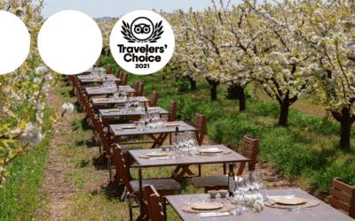 Terragust, ganadora del premio #TravellersChoice de Tripadvisor